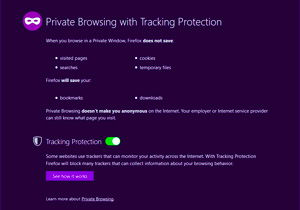 Private Browsing Window